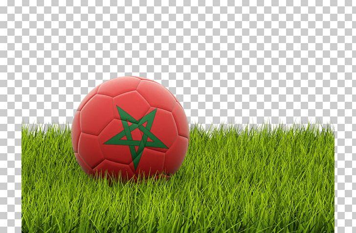 Albania National Football Team Nfl American Football England