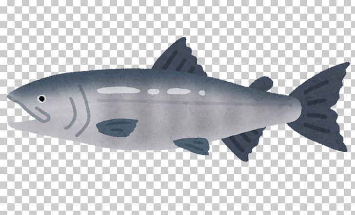 Chum Salmon Smoked Salmon Salmonids Fish Sockeye Salmon PNG, Clipart, Atlantic Salmon, Can, Chum Salmon, Fin, Fish Free PNG Download