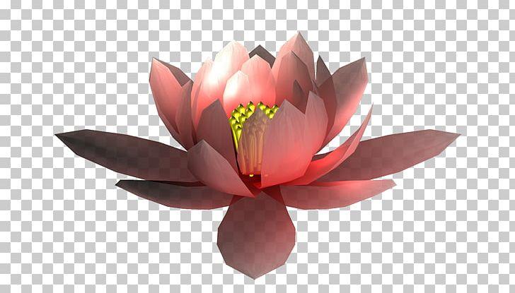 MTN Group PNG, Clipart, Blumen, Cicek, Cicek Resimleri, Flower, Flowers Free PNG Download