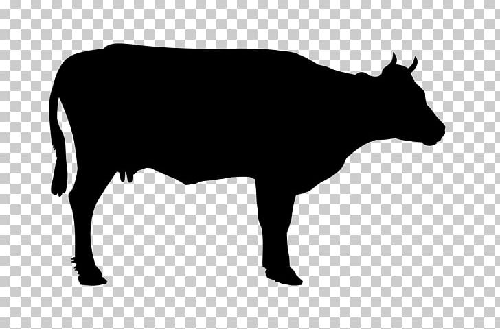 welsh black cattle beef cattle holstein friesian cattle png clipart black black and white bull cartoon welsh black cattle beef cattle holstein