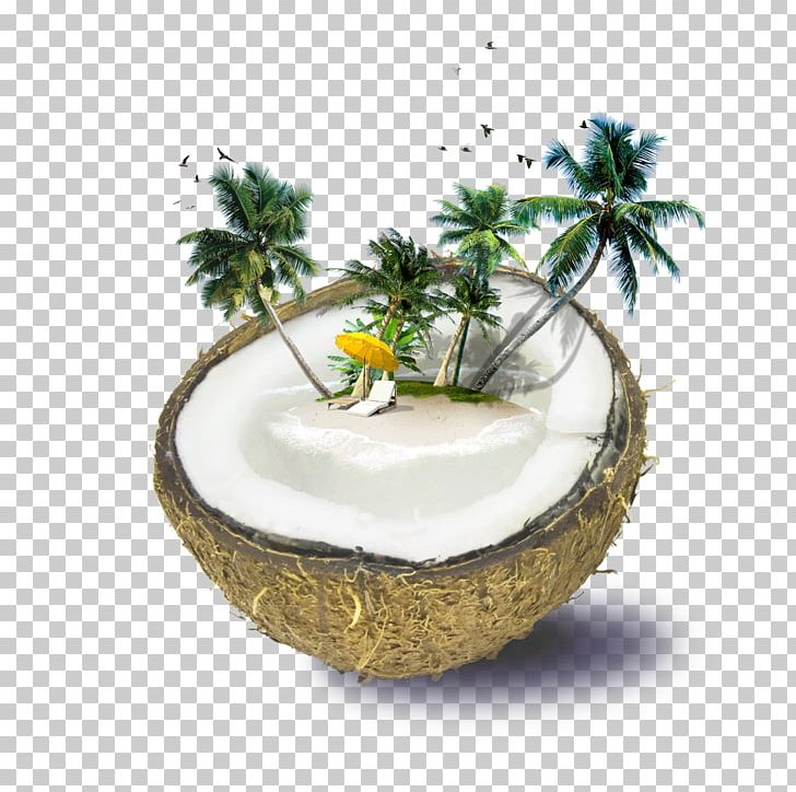Fiji Weligama Coconut Water Beach PNG, Clipart, Accommodation, Autumn Tree, Bar, Beach, Cartoon Coconut Trees Free PNG Download