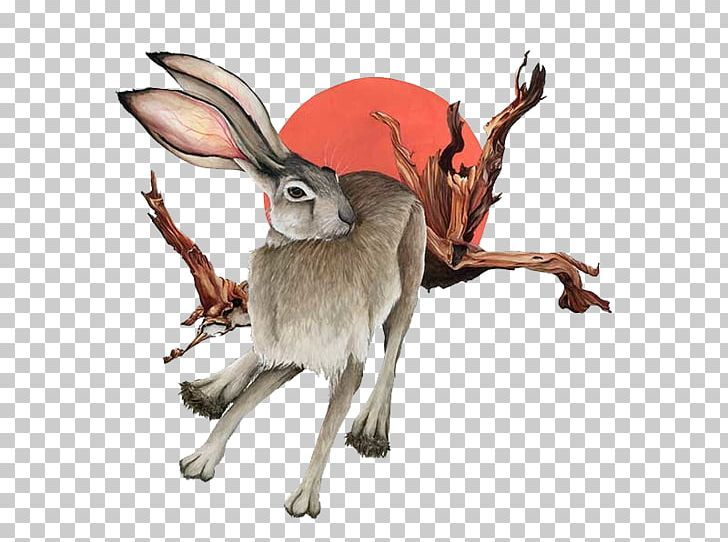 Domestic Rabbit Hare PNG, Clipart, Animal Figure, Animals, Branch, Branches, Domestic Rabbit Free PNG Download