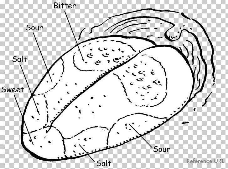 tongue map taste bud olfaction diagram png, clipart, art, black and white,  brain, cartoon,