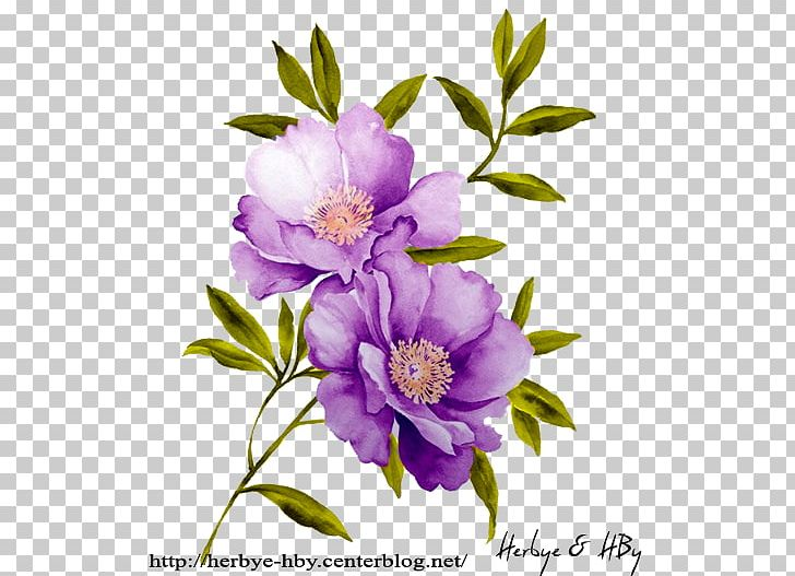 Watercolor: Flowers Stock Photography Stock.xchng Watercolor Painting PNG, Clipart, Branch, Camellia Sasanqua, Drawing, Floral Design, Flower Free PNG Download