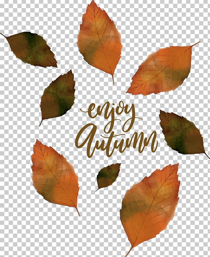 Euclidean Leaf Mushroom PNG, Clipart, Autumn, Autumn Leaves, Autumn Leaves Falling, Computer Icons, Deciduous Pattern Free PNG Download