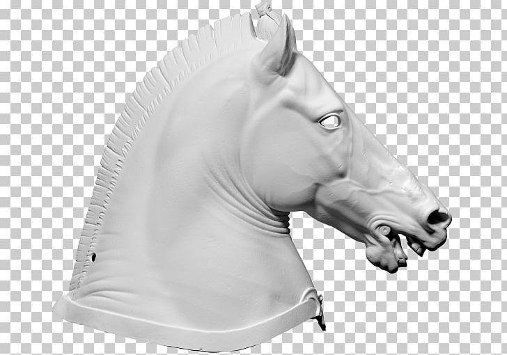 Horse Halter 3D Computer Graphics Wavefront  obj File 3D Scanner PNG