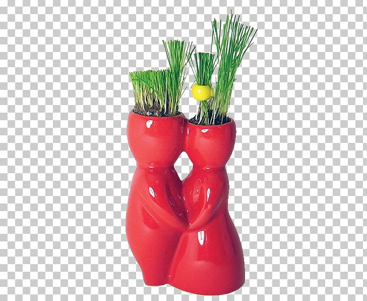 Flowerpot PNG, Clipart, Beijinho, Flowerpot, Grass, Others, Vase Free PNG Download