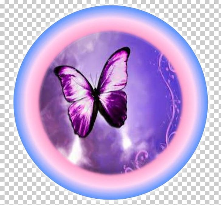Butterfly Desktop Printing Png Clipart Butterfly Canvas