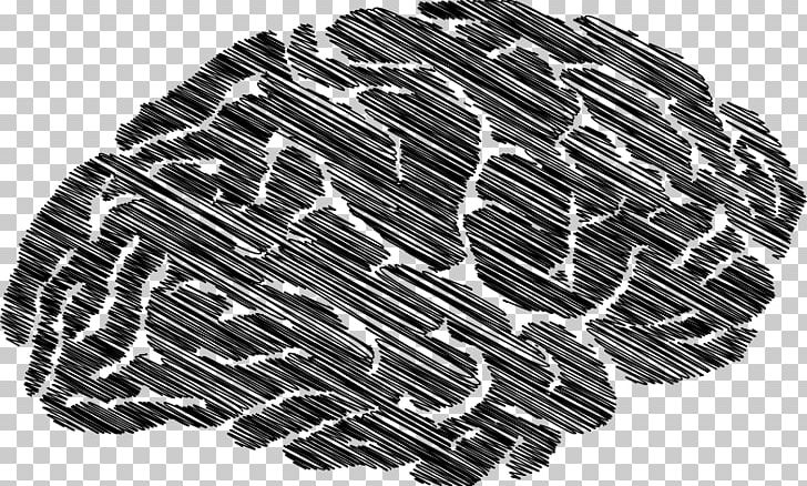 Zazzle Printing Information Brain Endocannabinoid System PNG, Clipart, Automotive Tire, Black, Black And White, Brain, Download Free PNG Download