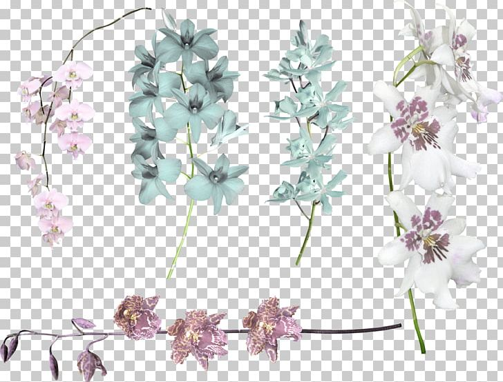 Cut Flowers Floral Design Violet Lilac PNG, Clipart, Blossom, Body Jewellery, Body Jewelry, Cherry Blossom, Cut Flowers Free PNG Download