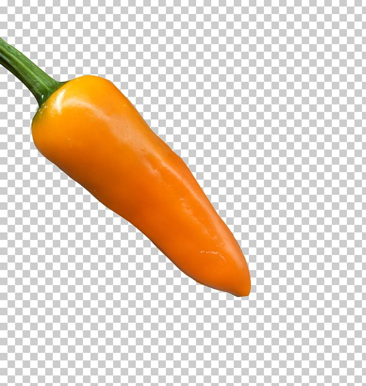 Habanero Serrano Pepper Cayenne Pepper Bell Pepper Jalapexf1o PNG, Clipart, Bell Peppers And Chili Peppers, Bullet, Bullets, Capsicum, Chili Pepper Free PNG Download