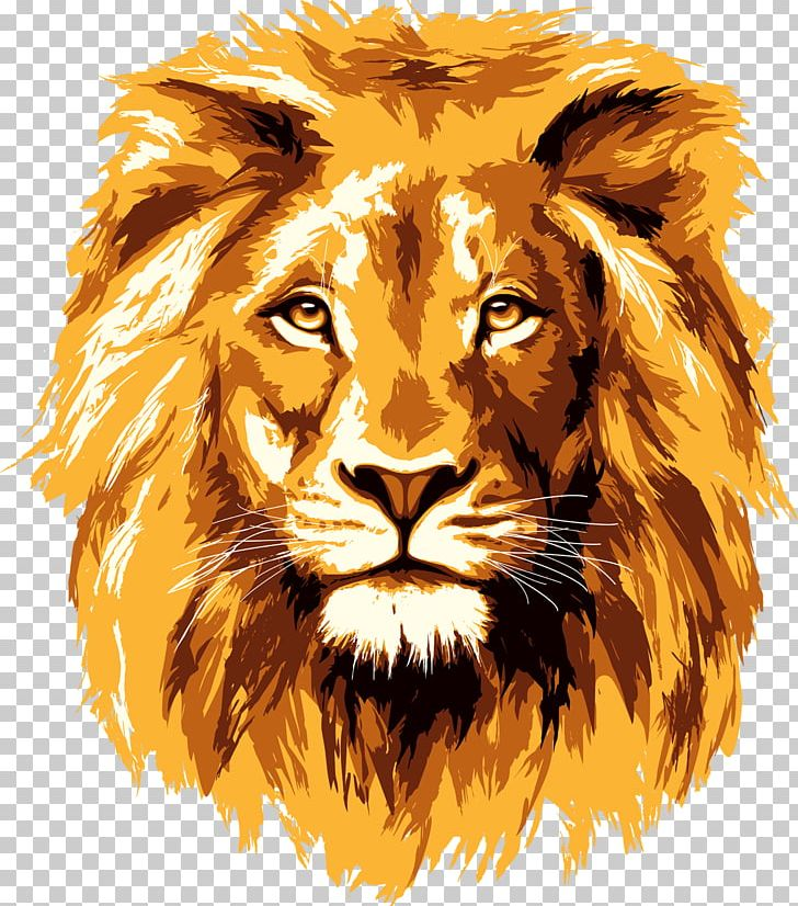 Lionhead Rabbit PNG, Clipart, Animals, Art, Big Cats, Carnivoran, Cat Like Mammal Free PNG Download