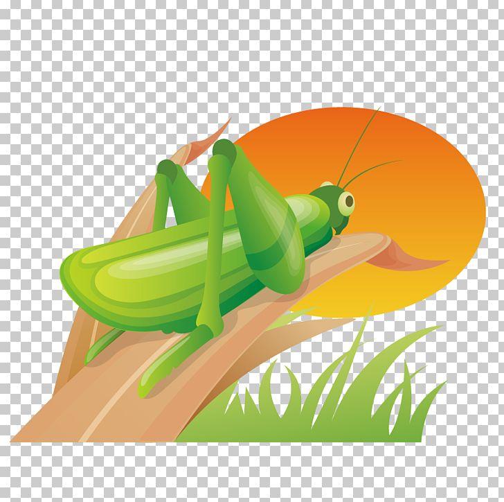 South Korea Icon Design World Wide Web Icon PNG, Clipart