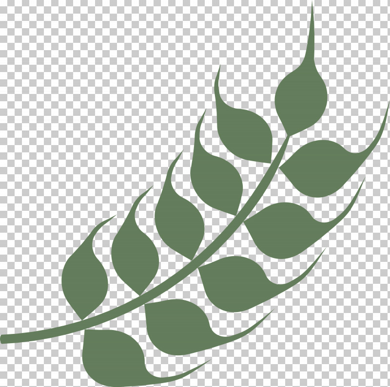 Wheat Ears PNG, Clipart, Biology, Green, Leaf, Line, Plants Free PNG Download