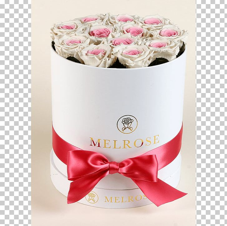 Flowers Of Melrose Petal Boxing White PNG, Clipart, Blue, Boxing, Flower, Petal, Pink Free PNG Download