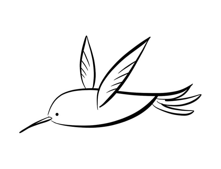 Hummingbird Coloring Book Drawing PNG, Clipart, Artwork, Beak, Bird ...