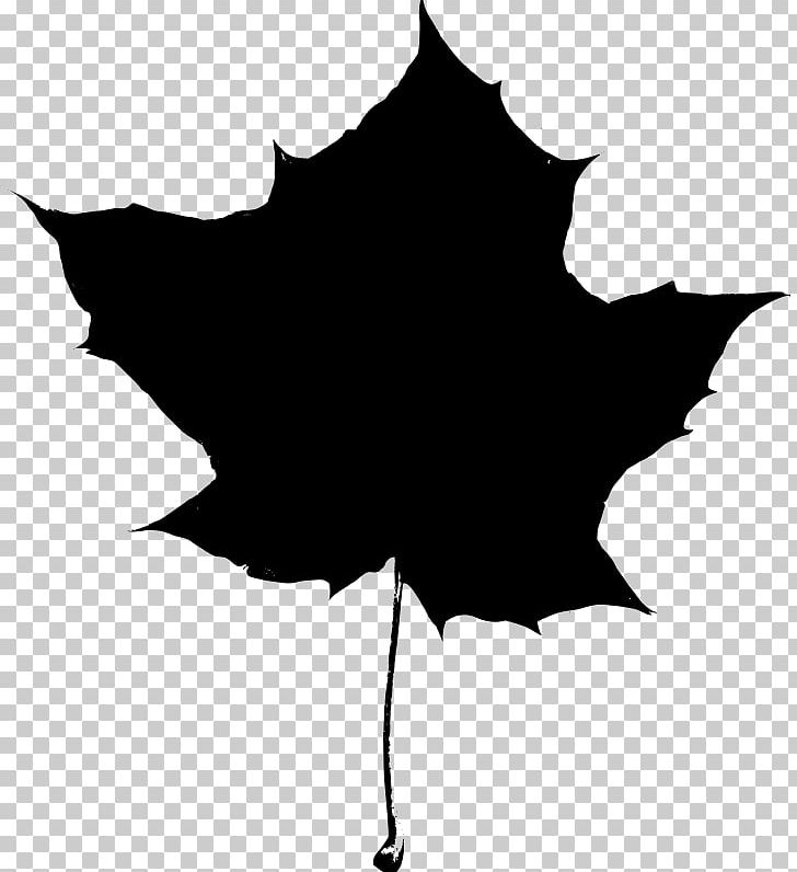 Autumn Leaf Color Maple Leaf PNG, Clipart, Autumn, Autumn Leaf Color, Black, Black And White, Branch Free PNG Download