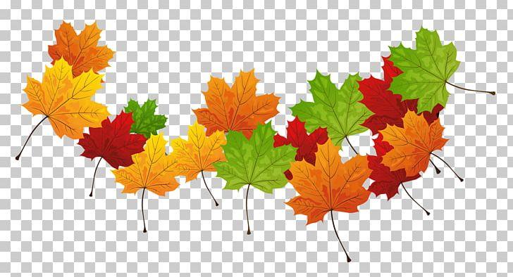 Autumn Leaf Color Autumn Leaf Color PNG, Clipart, Autumn, Autumn Leaf Color, Autumn Leaves, Clipart, Computer Wallpaper Free PNG Download