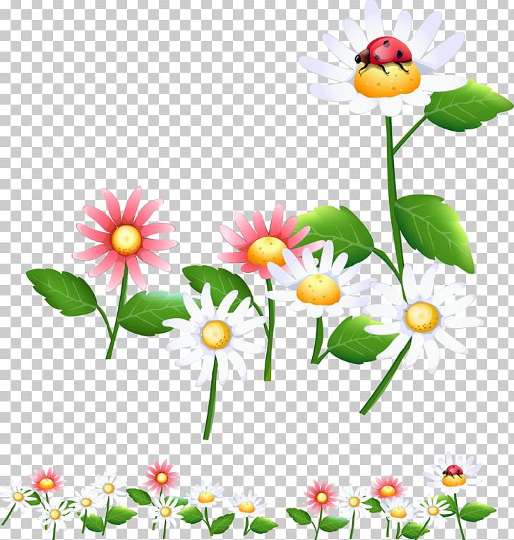 Drawing PNG, Clipart, Annual Plant, Artwork, Chamaemelum Nobile, Daisy, Daisy Family Free PNG Download