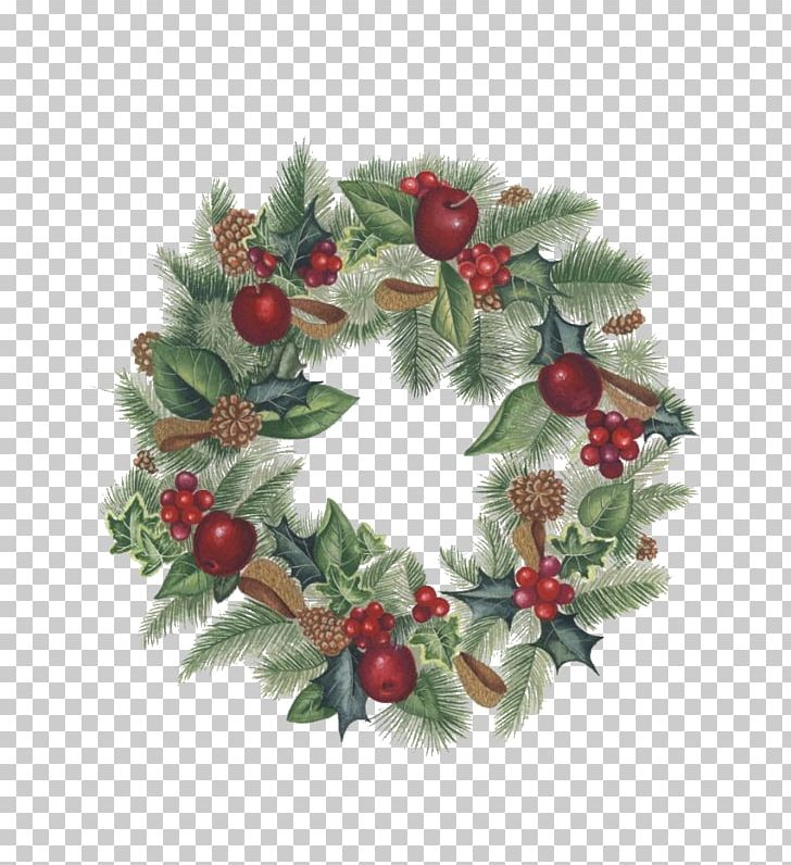 Christmas Ornament Wreath Garland Drawing Png Clipart Apple