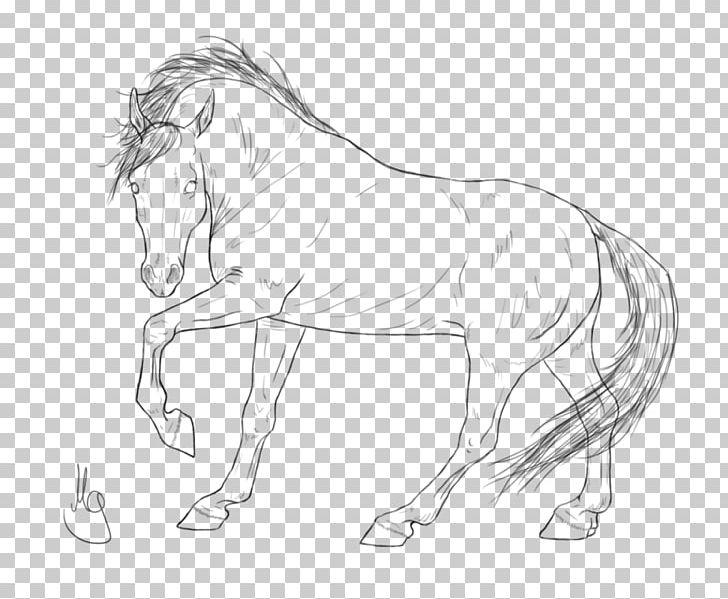Mane Halter Mustang Stallion Rein PNG, Clipart, Animal Figure, Arabian Horse, Arm, Artwork, Black And White Free PNG Download