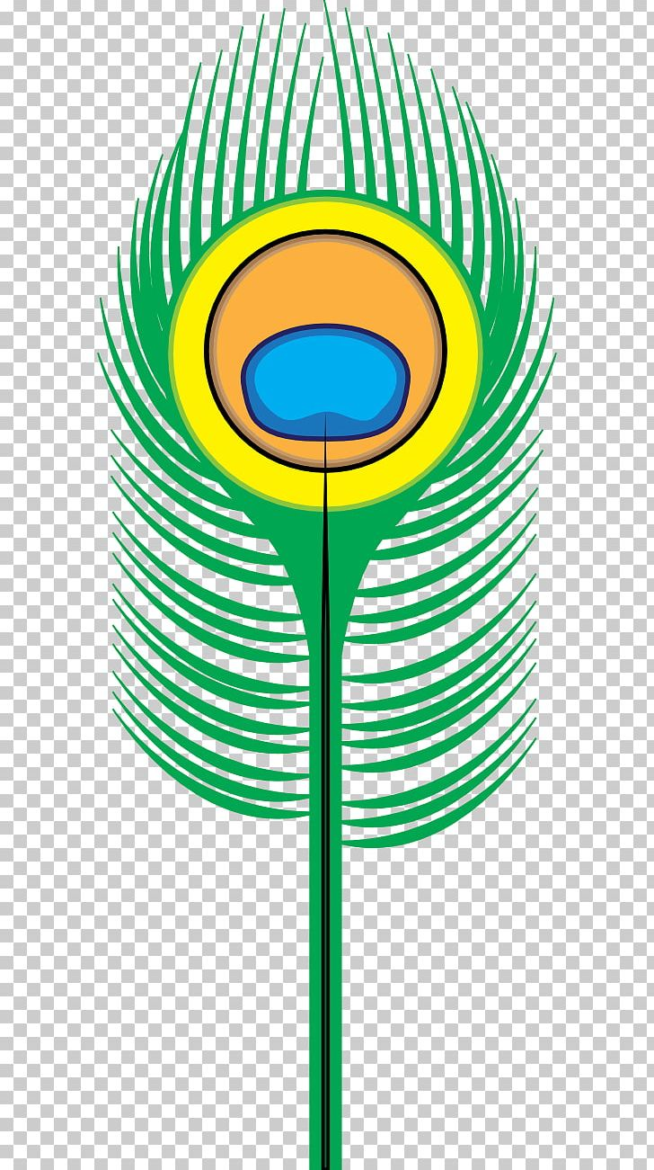 Bird Feather Peafowl PNG, Clipart, Art, Asiatic Peafowl, Bird, Cartoon Peacock Pictures, Circle Free PNG Download
