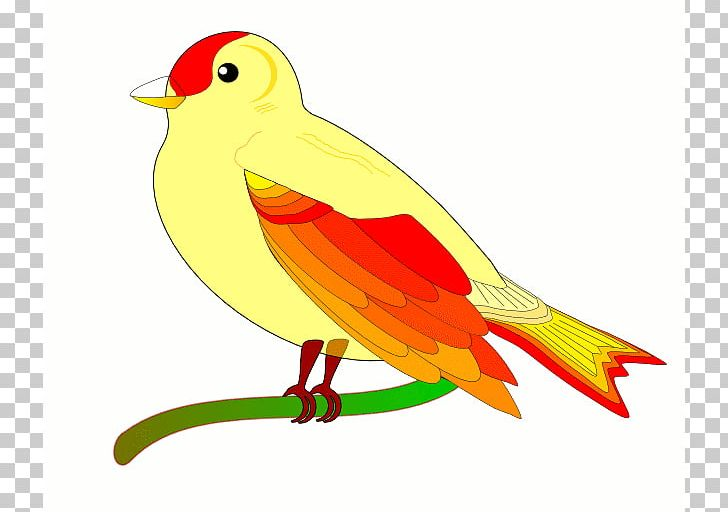 Animated bird. Flight animation png clipart