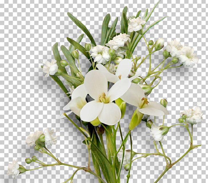 Cut Flowers Floral Design Floristry Flower Bouquet PNG, Clipart, Cut Flowers, Ear, Floral Design, Floristry, Flower Free PNG Download