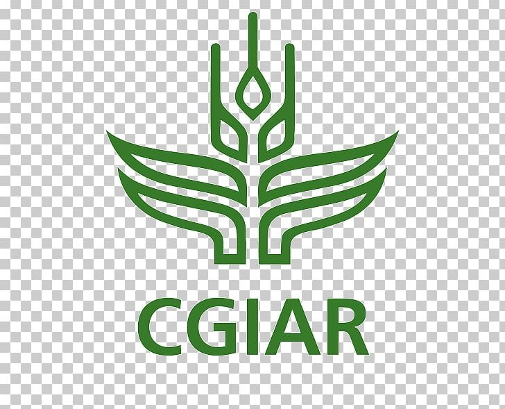CGIAR International Institute Of Tropical Agriculture