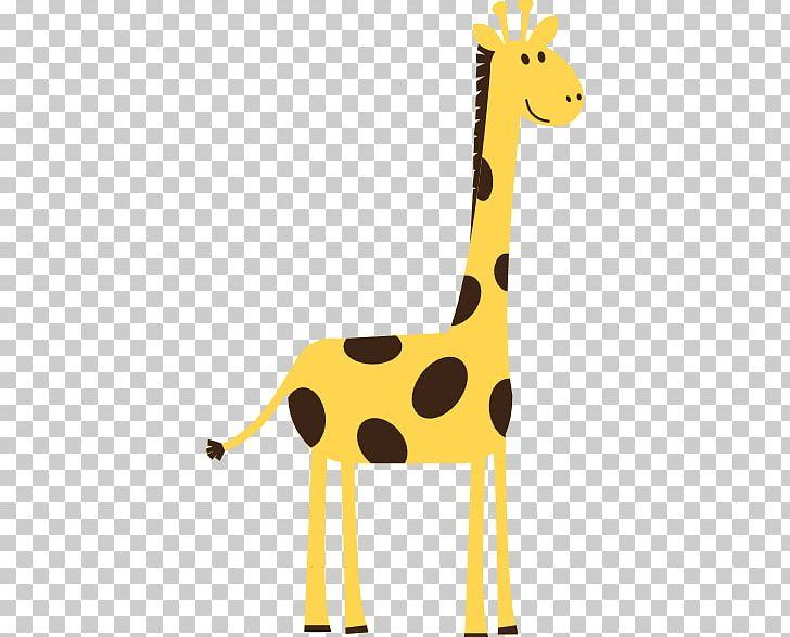Cuteness Northern Giraffe Png Clipart Animal Figure Cartoon Cute