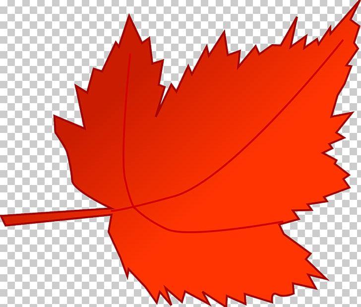 Autumn Leaf Color Autumn Leaf Color Red PNG, Clipart, Autumn, Autumn Leaf Color, Autumn Leaves, Blog, Color Free PNG Download