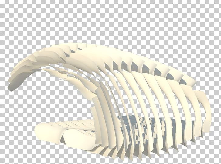Parametric Design Rhinoceros 3D Grasshopper Parametric