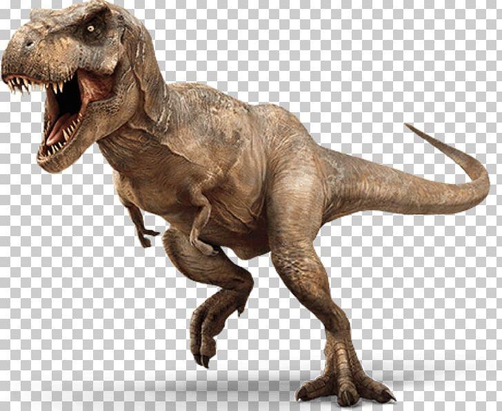 Jurassic World Evolution Jurassic Park: The Game Tyrannosaurus Portable Network Graphics Dinosaur PNG, Clipart, Dinosaur, Extinction, Fantasy, Fauna, Film Free PNG Download