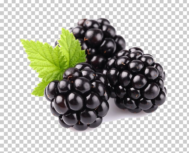 Tayberry Blackberry Fruit Raspberry PNG, Clipart, Berry, Bilberry, Blackberry, Boysenberry, Bramble Free PNG Download