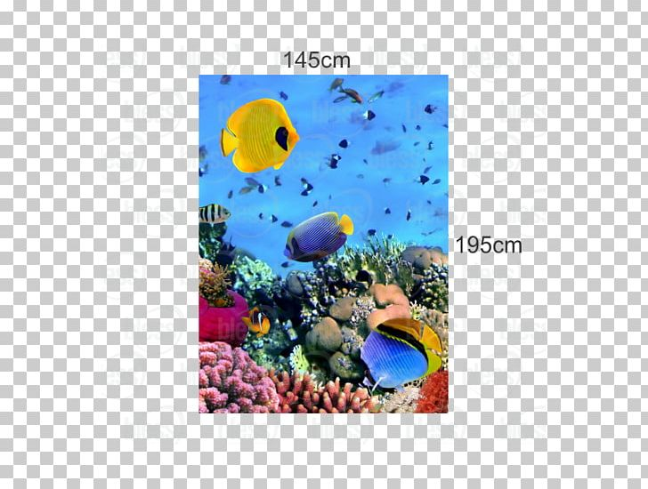 Coral reef theme image 3 Vector - stock illustration, royalty free  illustrations, stock clip art icon, stock cl… | Coral reef drawing, Coral  reef art, Easy drawings