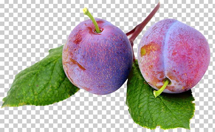 Fruit Plum PNG, Clipart, Apple, Diet Food, Display Resolution, Download, Food Free PNG Download