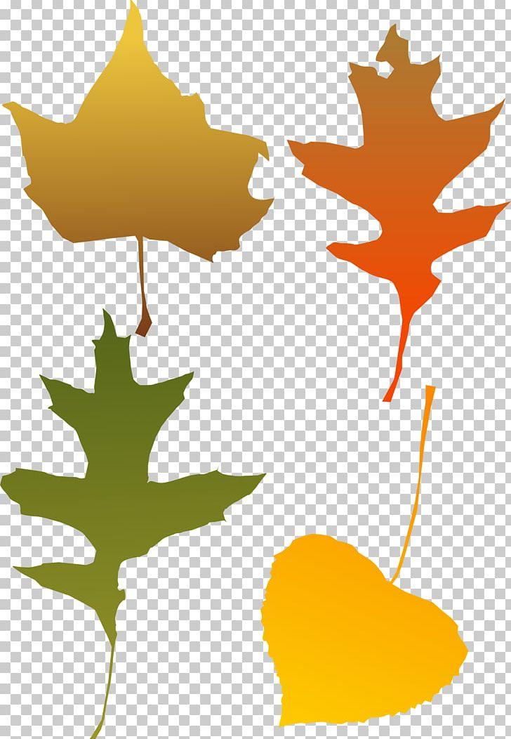 Autumn Leaf Color PNG, Clipart, Autumn, Autumn Leaf Color, Autumn Leaves, Branch, Color Free PNG Download