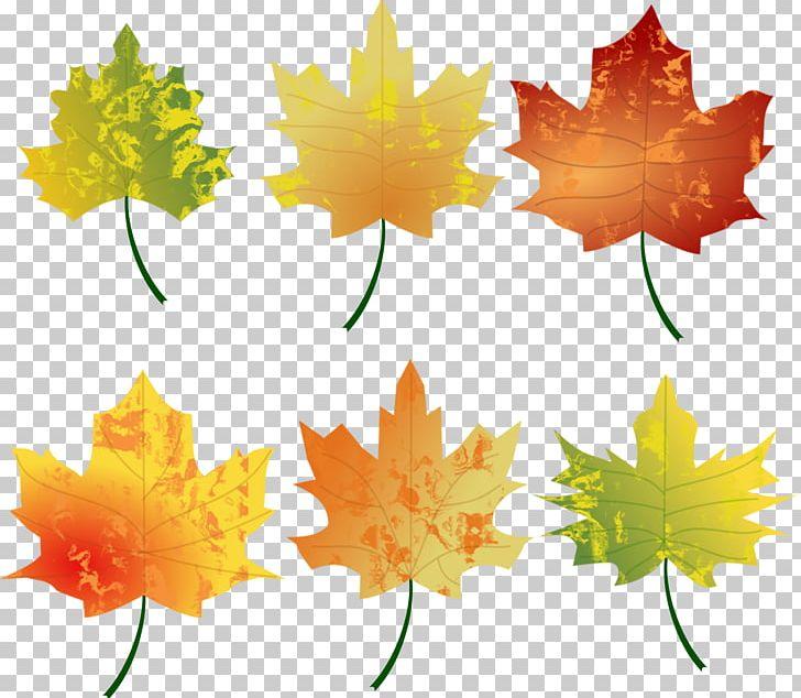 Autumn Leaf Color Autumn Leaf Color PNG, Clipart, Autumn, Autumn Leaf Color, Blog, Color, Desktop Wallpaper Free PNG Download