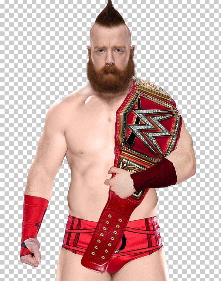 Znalezione obrazy dla zapytania: Sheamus WWE Universal Title
