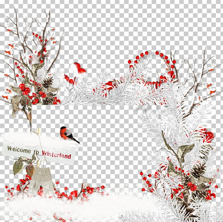Christmas Decoration Christmas Tree Christmas Ornament PNG, Clipart, Border Frame, Branch, Christmas, Christmas Decoration, Christmas Ornament Free PNG Download