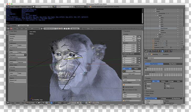 Graphics python download