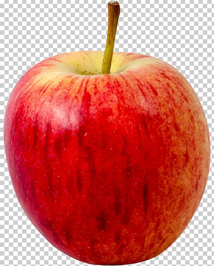 Apple Fruit PNG, Clipart, Apple, Computer Icons, Diet Food, Display Resolution, Food Free PNG Download