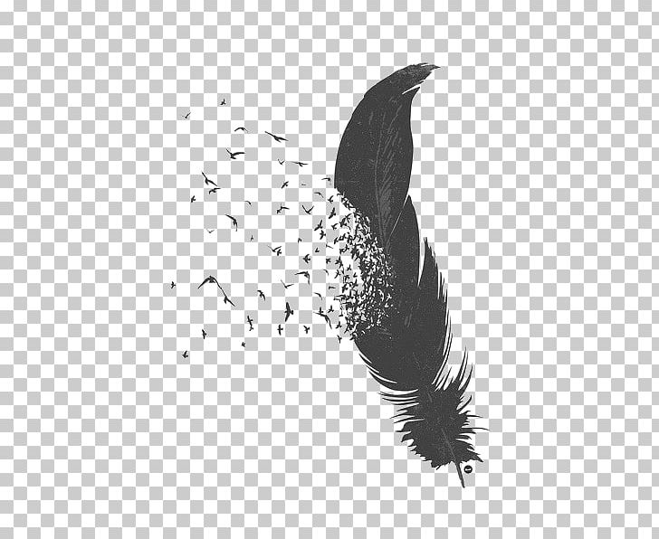 Bird Feather Asiatic Peafowl PNG, Clipart, Animals, Asiatic Peafowl, Beak, Bird, Black Free PNG Download