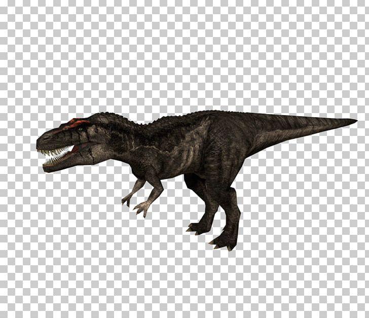 Carcharodontosaurus Jurassic Park: Operation Genesis Tyrannosaurus Jurassic Park III: Park Builder Dilophosaurus PNG, Clipart, Albertosaurus, Animal Figure, Dinosaur, Extinction, Jurassic Park Free PNG Download