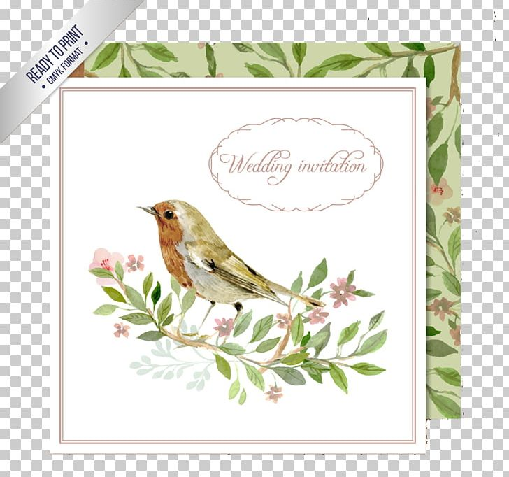 Wedding Invitation Bird Watercolor Painting Png Clipart