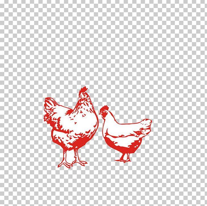 Chicken Livestock Poultry PNG, Clipart, Animal, Animals, Beak, Bird, Chicken Egg Free PNG Download