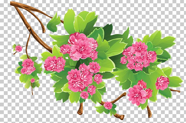 Spring PNG, Clipart, Blossom, Branch, Clipart, Clip Art, Cut Flowers Free PNG Download