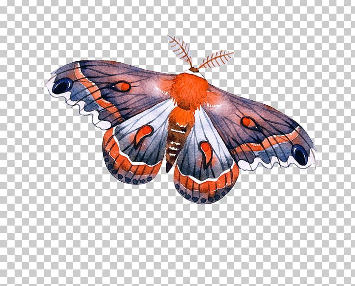 Monarch Butterfly Arrow PNG, Clipart, Adobe Illustrator, Arah, Arrow, Art, Brush Footed Butterfly Free PNG Download