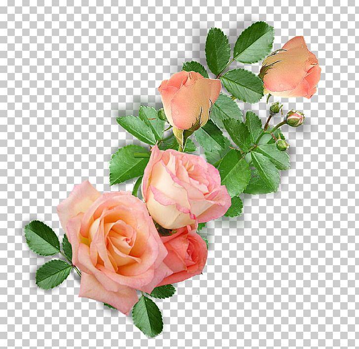 Garden Roses Cabbage Rose Floribunda Floral Design Cut Flowers PNG, Clipart, Artificial Flower, Atari Xl, Cabbage Rose, Cut Flowers, Floral Design Free PNG Download