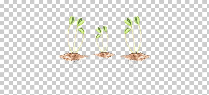 Commodity PNG, Clipart, Commodity, Grass, Grass Family, Others Free PNG Download